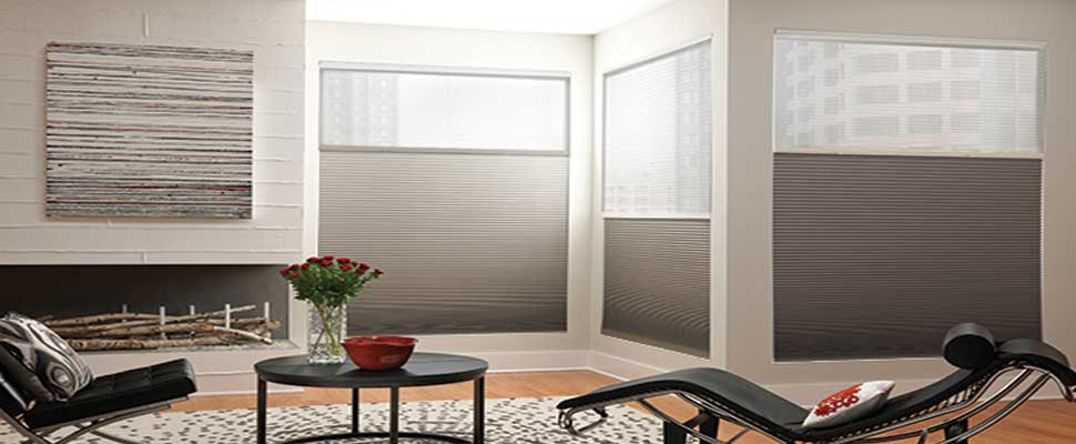 Day-Night-Cellular-Shades-Canada - ZebraBlinds.ca