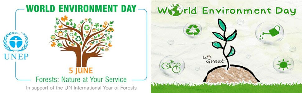 World-environment-day-Canada - ZebraBlinds.ca