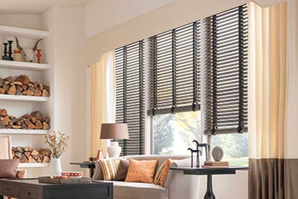 Brushed Aluminum Blinds