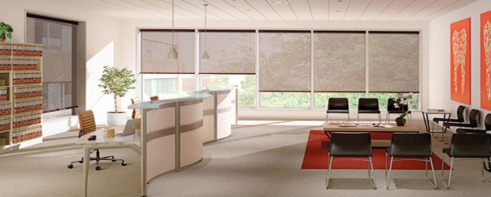 Energy-efficient-window-shades-Canda - Zebrablinds.ca