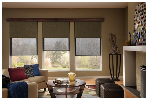 Dual-Shades With Cassette Valance