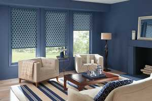 Roller-Shades-Canada-For-Living-Room - Zebrablinds.ca