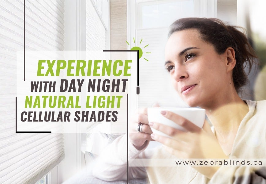 Enjoy Natural Light With Day Night Cellular Shades