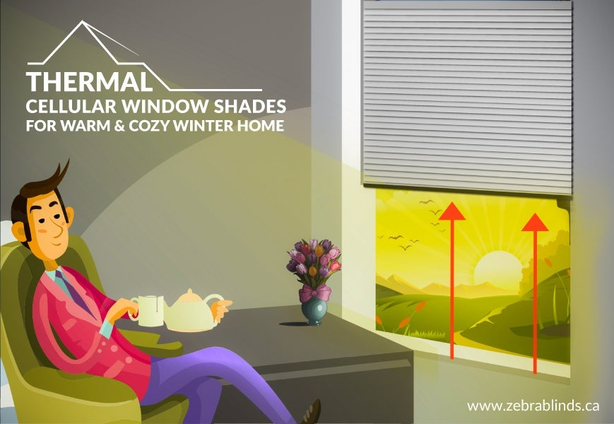 Thermal Cellular Window Coverings