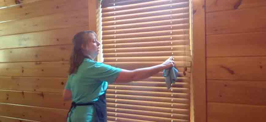 Easy to Clean Window Blinds