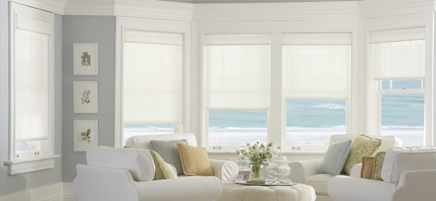 Sunroom Window Shades