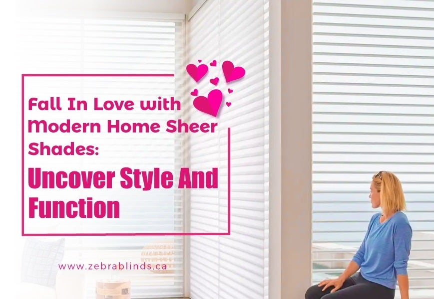 Modern Home Sheer Shades