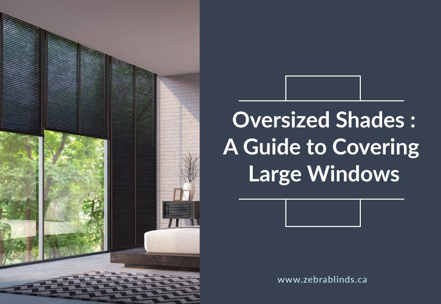 Large Window Blinds and Shades