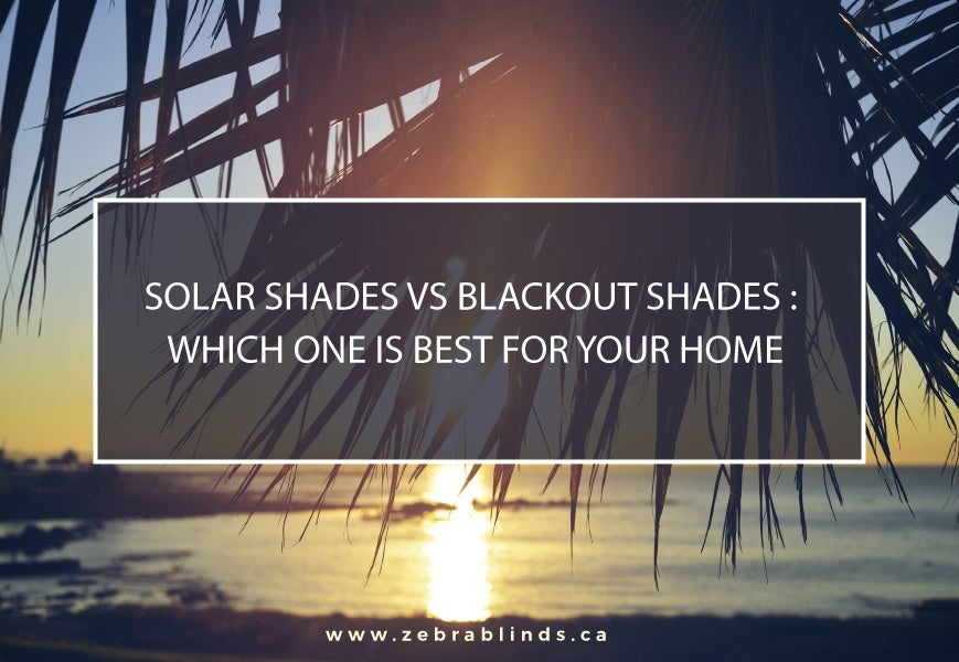Solar Shades Vs Blackout Shades Which One Is Best For