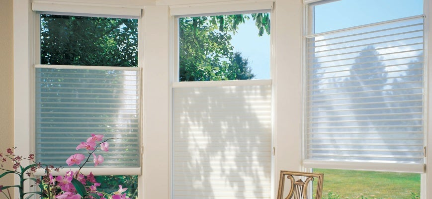 Open Window Blinds to Prevent Moisture