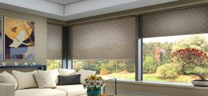 Remote Operated Blinds