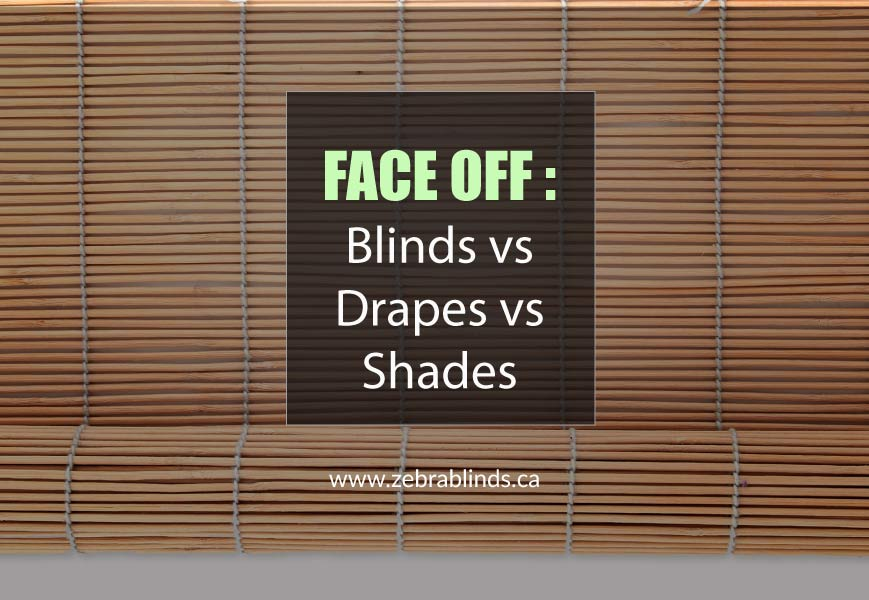 Modern Shades and Blinds