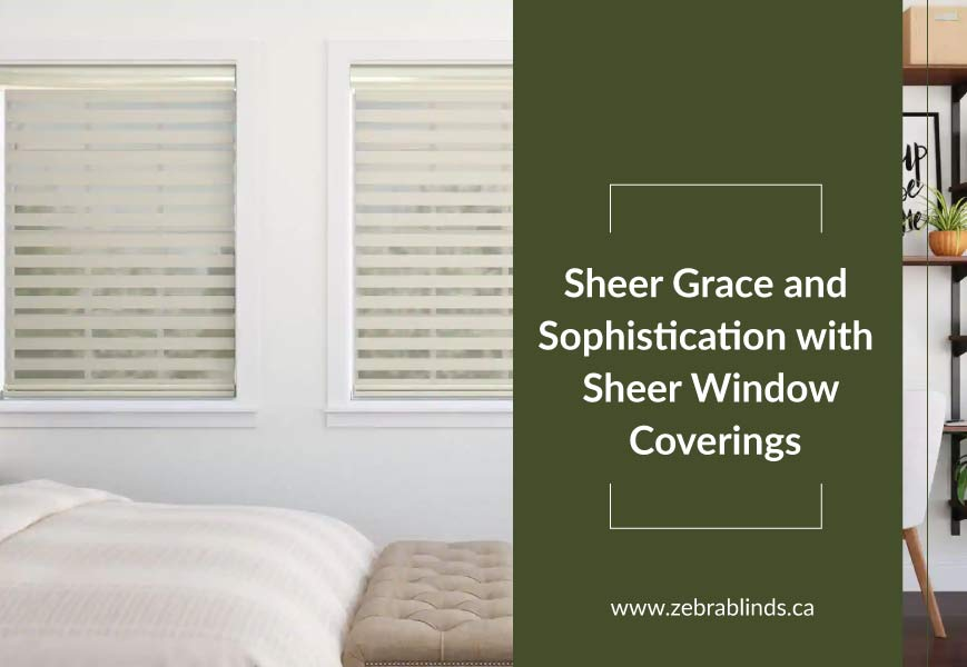 Sheer Window Covering Ideas