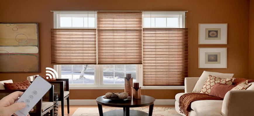 Motorized Top Down Bottom Up Pleated Shades