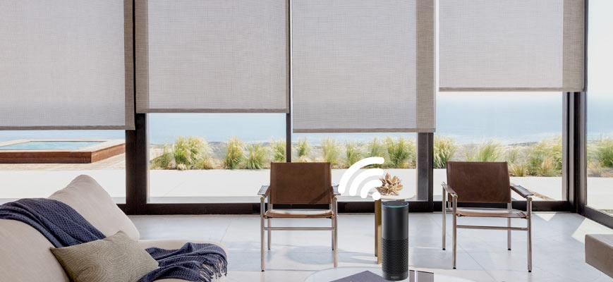 Alexa Controlled Roller Shades