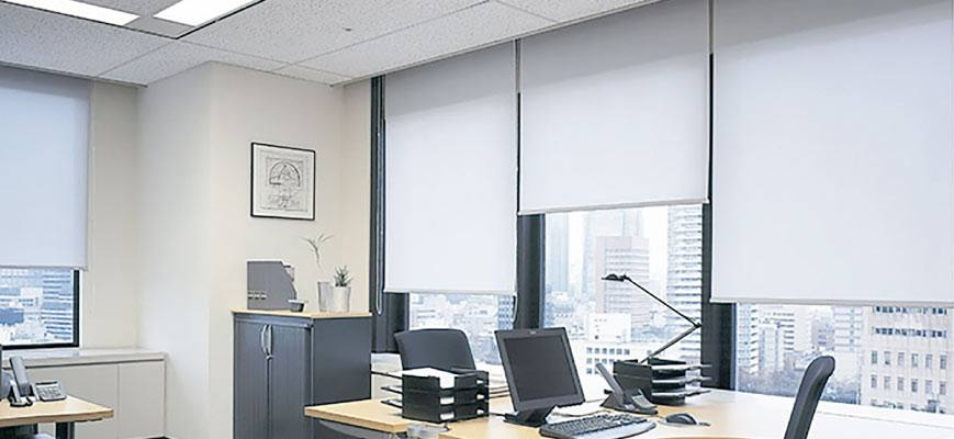 Roller Shades for Office