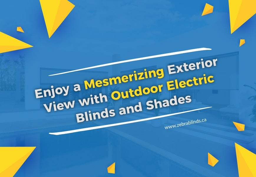 Outdoor Electric Blinds and Shades
