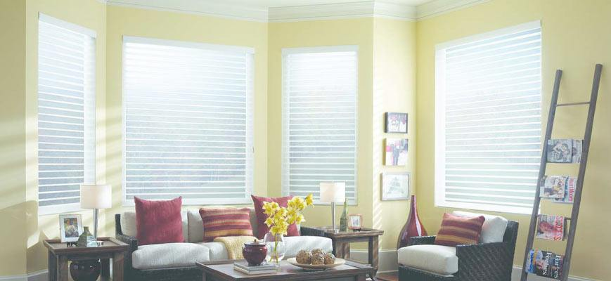 White Sheer Roller Shades for Bow Windows