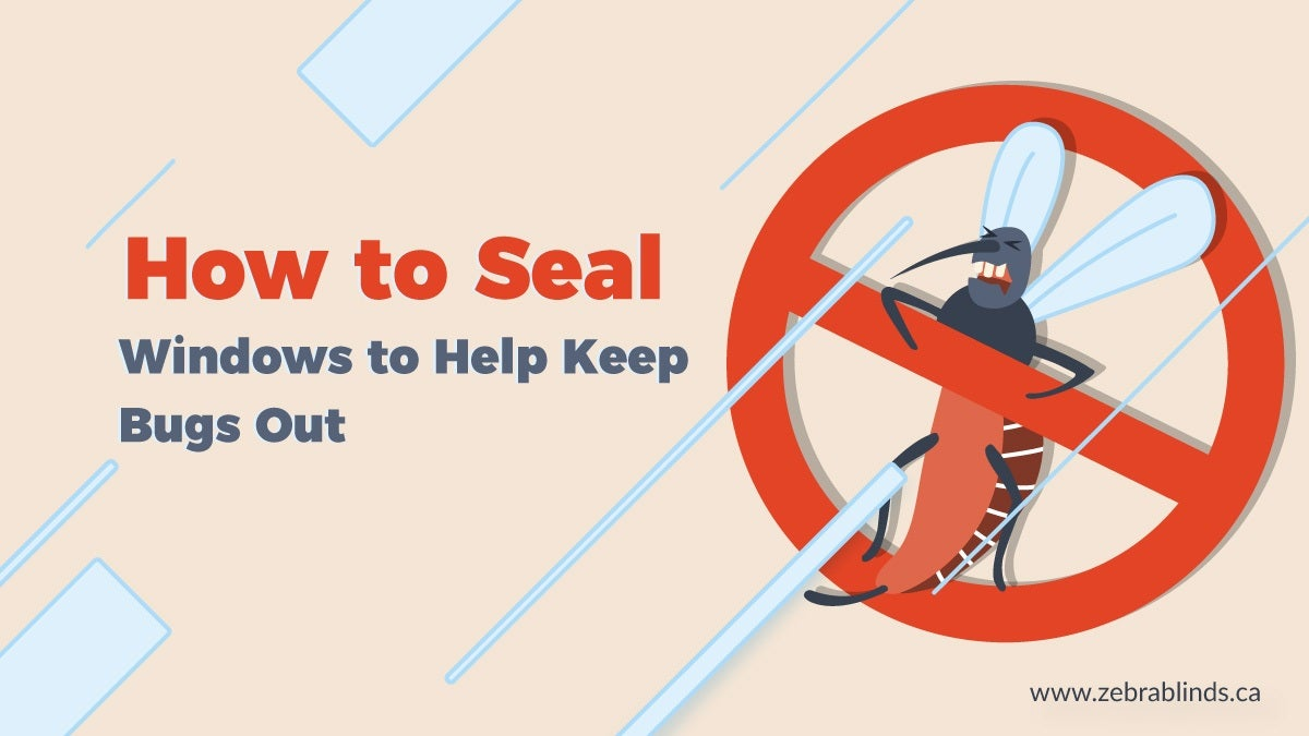 How to Seal Windows to Help Keep Bugs Out