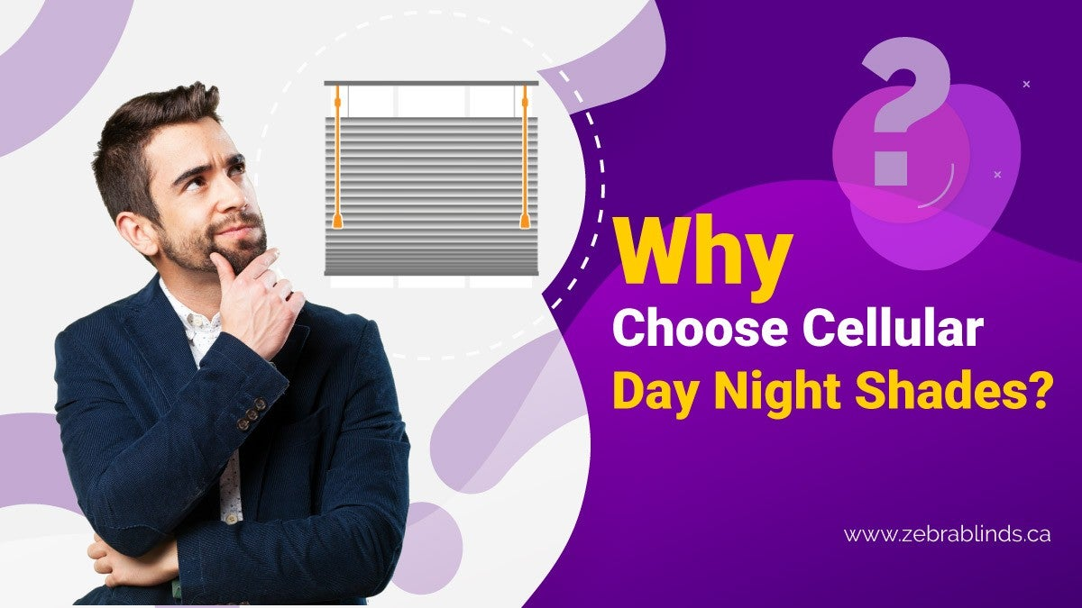 Why Choose Cellular Day Night Shades