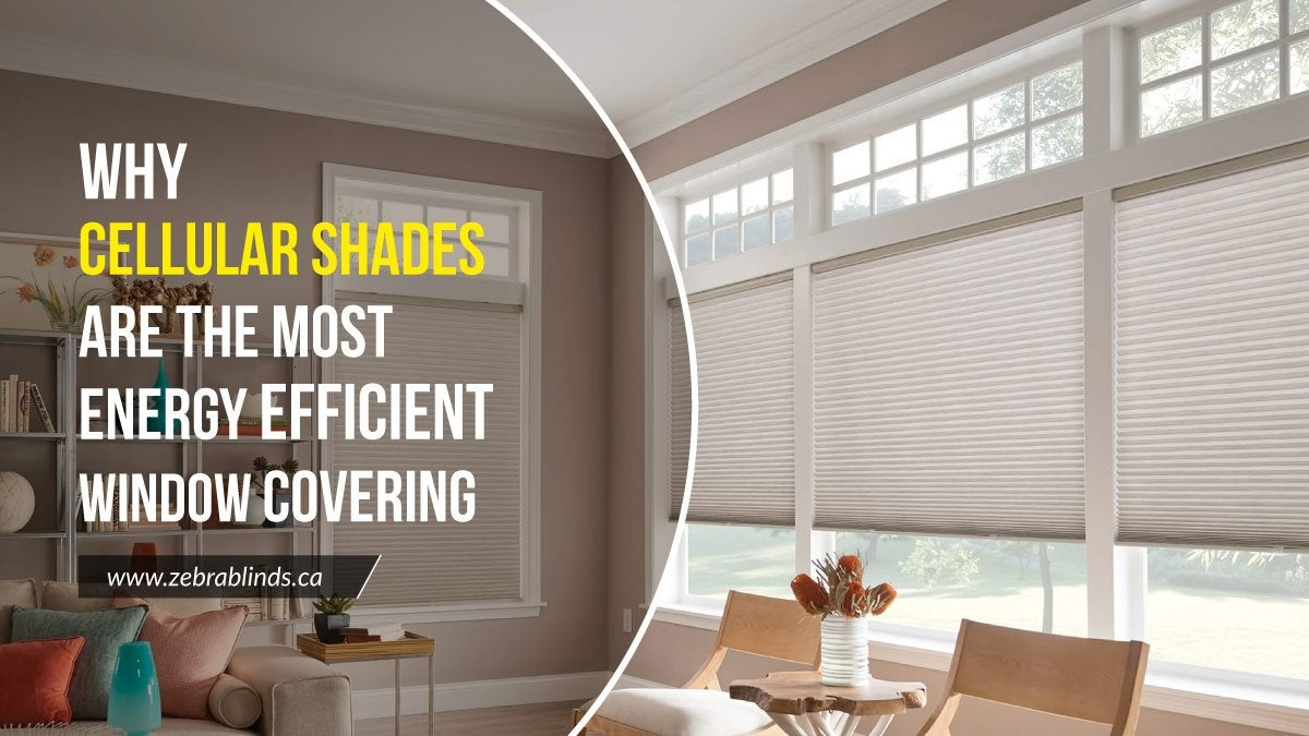 Cellular Shades Window Covering