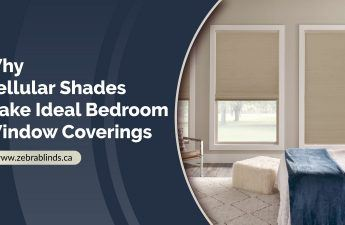 Cellular Shades Window Coverings