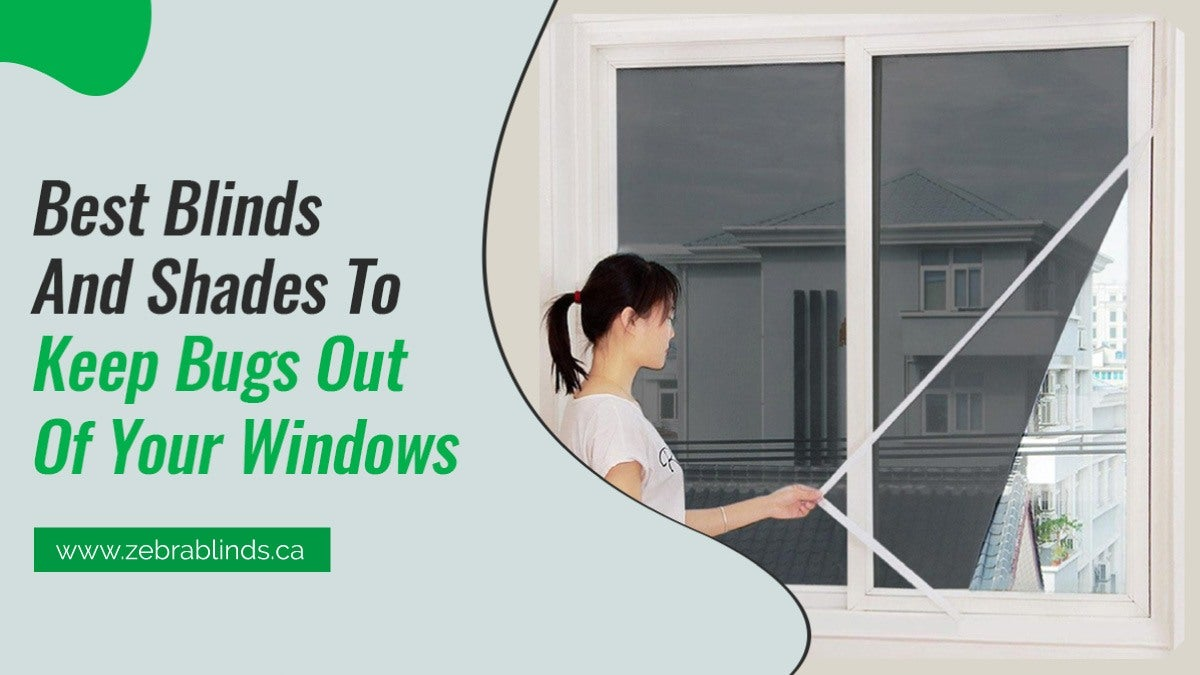 Best Blinds And Shades To Keep Bugs-Out Of Your Windows