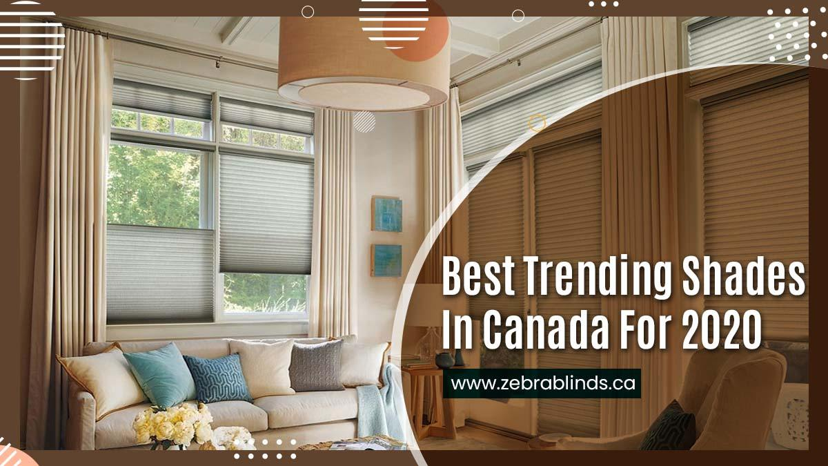 Best Trending Shades In Canada For 2020