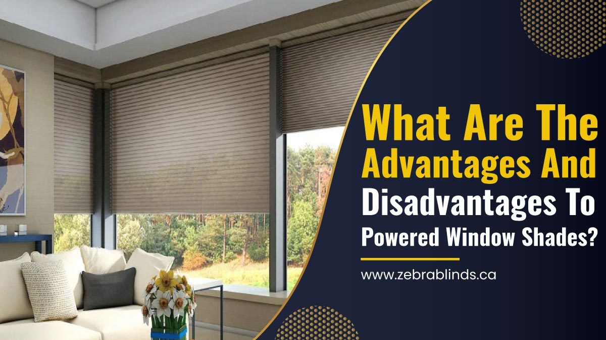 Advantages And Disadvantages To Powered Window Shades