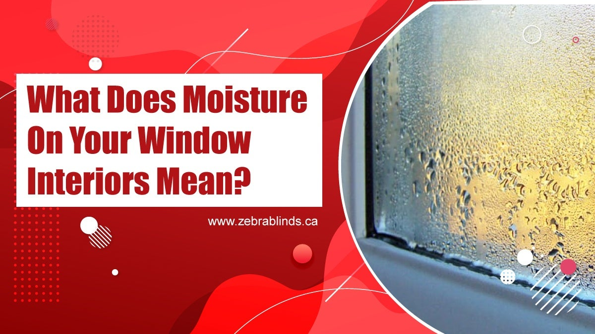What Does Moisture On Your Window Interiors Mean