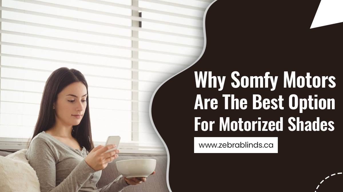 Why Somfy Motors Are The Best Option For Motorized Shades