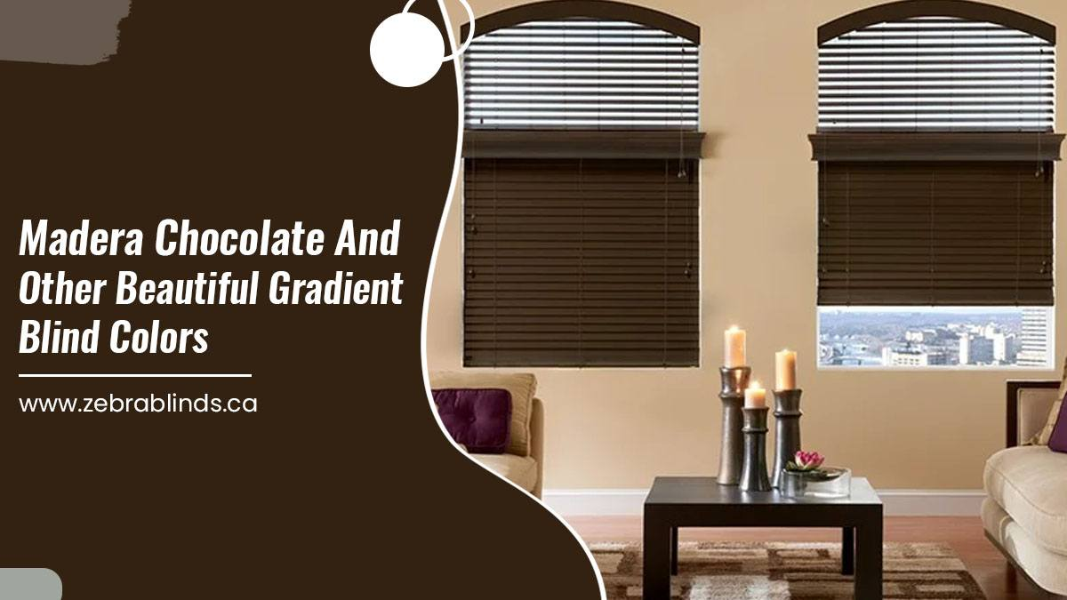 Madera Chocolate and Other Beautiful Gradient Blind Colors