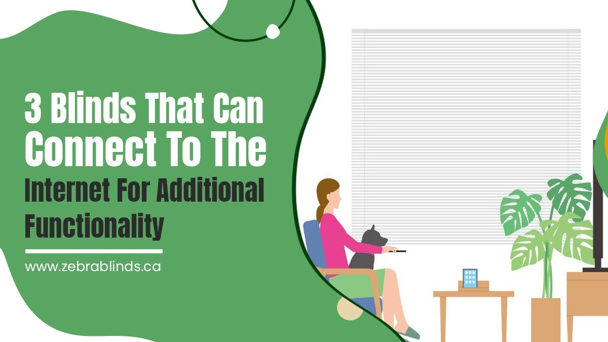 3 Blinds That Can Connect to the Internet for Additional Functionality