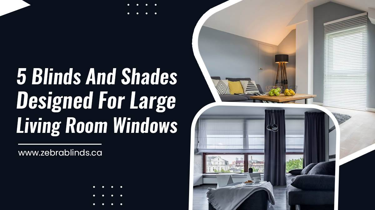 5 Blinds and Shades Designed for Large Living Room Windows