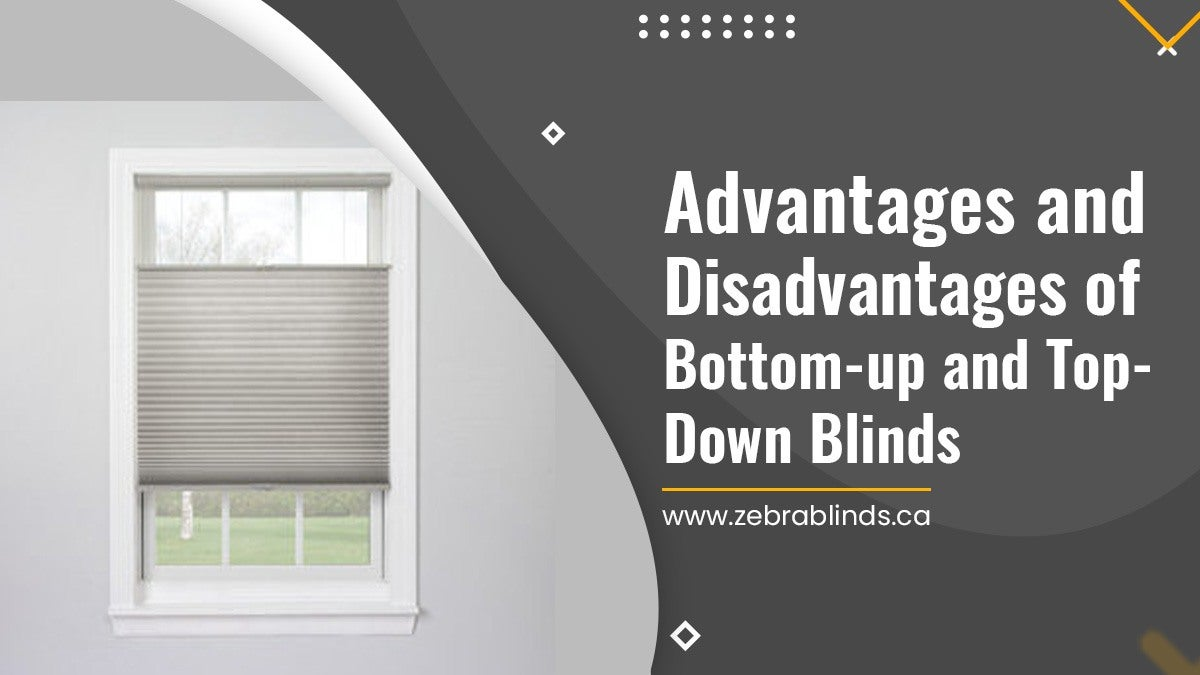 Advantages and Disadvantages of Bottom-up and Top-Down Blinds