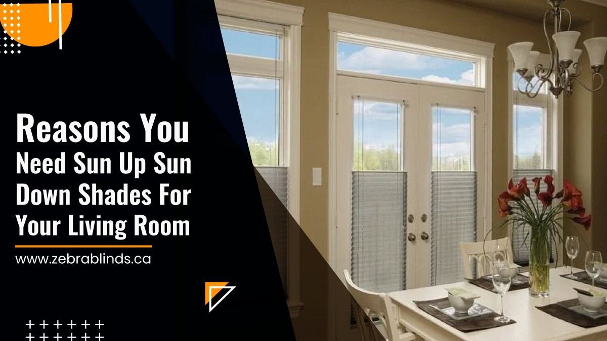 Reasons You Need Sun Up Sun Down Shades For Your Living Room