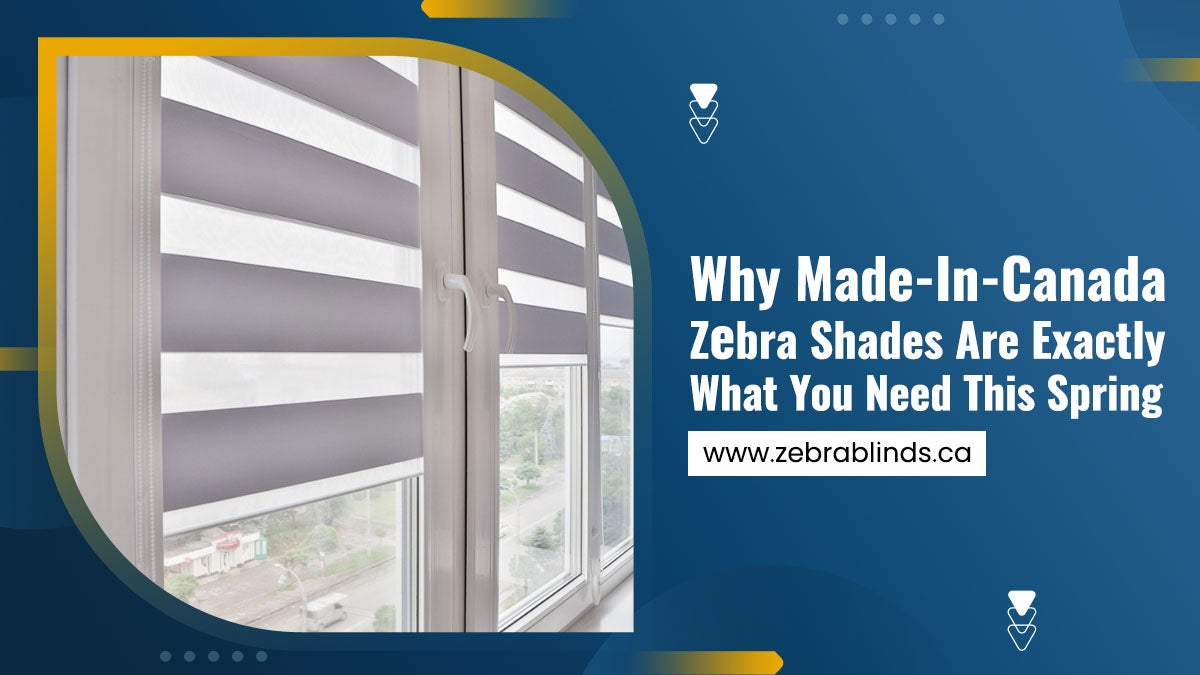 Why-Made-In-Canada-Zebra-Shades-Are-Exactly-What-You-Need-This-Spring