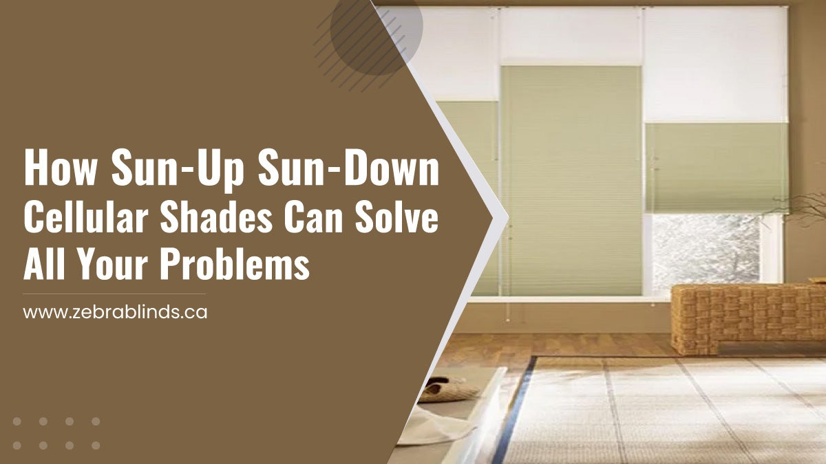 How Sun-Up Sun-Down Cellular Shades Can Solve All Your Problems