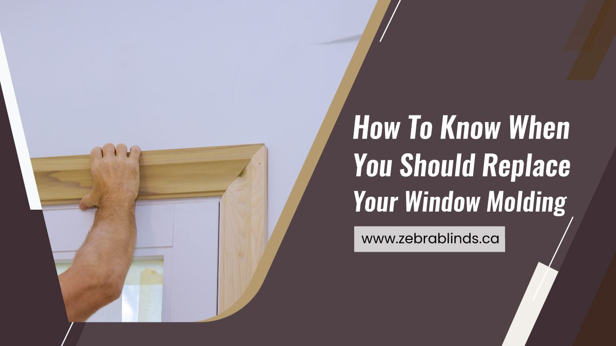 How To Know When You Should Replace Your Window Molding