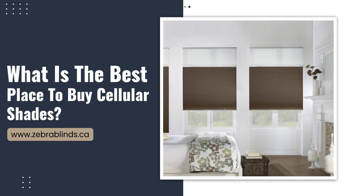 What-Is-The-Best-Place-To-Buy-Cellular-Shades