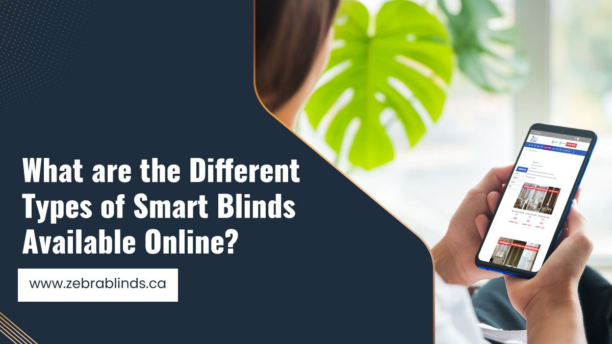 What are the Different Types of Smart Blinds Available Online